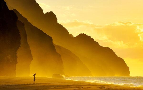 Sunglasses for an aloha state of mind